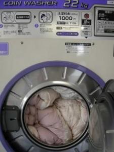 羽毛布団を大型洗濯機へ