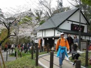 岡崎公園『桜茶屋』でランチ
