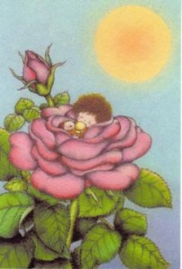 イラストレーター「中村朋子」さんのポストカード
