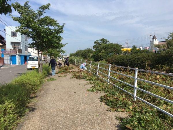 神戸川堤防の草刈り