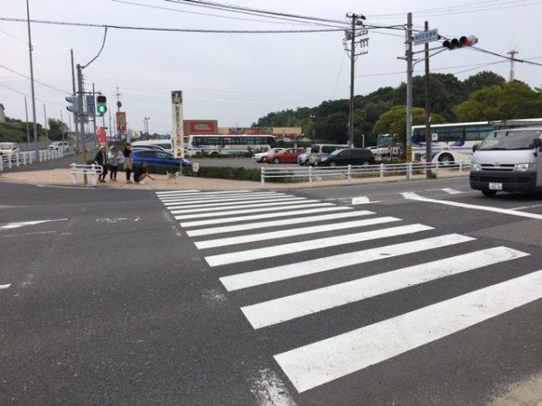 半田市の人気観光スポット 矢勝川の彼岸花