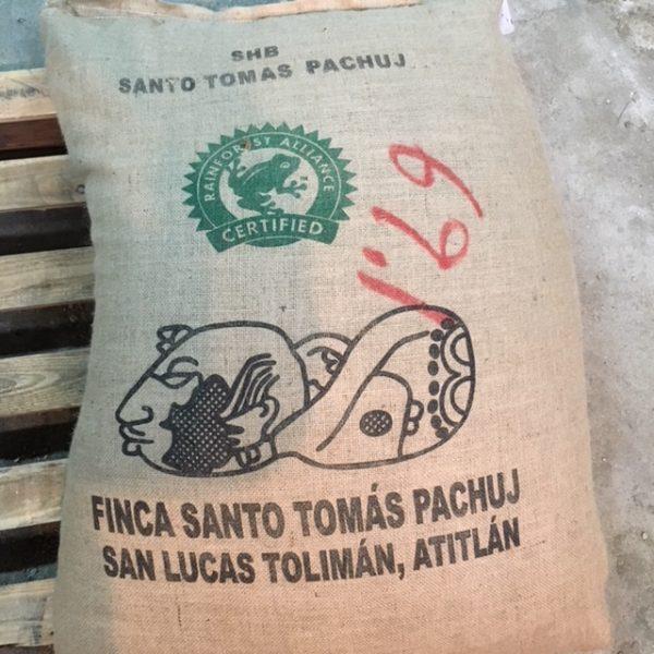 ガテマラ(トーマス・パチュージ農園) 新豆