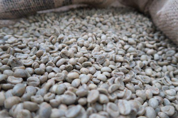 ニカラグア~サンタ・アナ農園~ 生豆