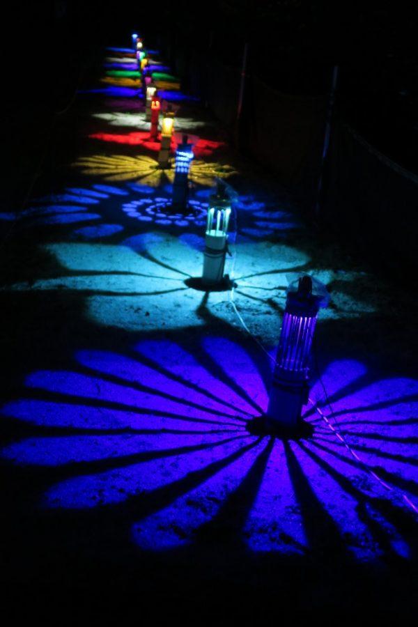 阿久比 白沢ホタルの里 カラフルな竹灯籠2