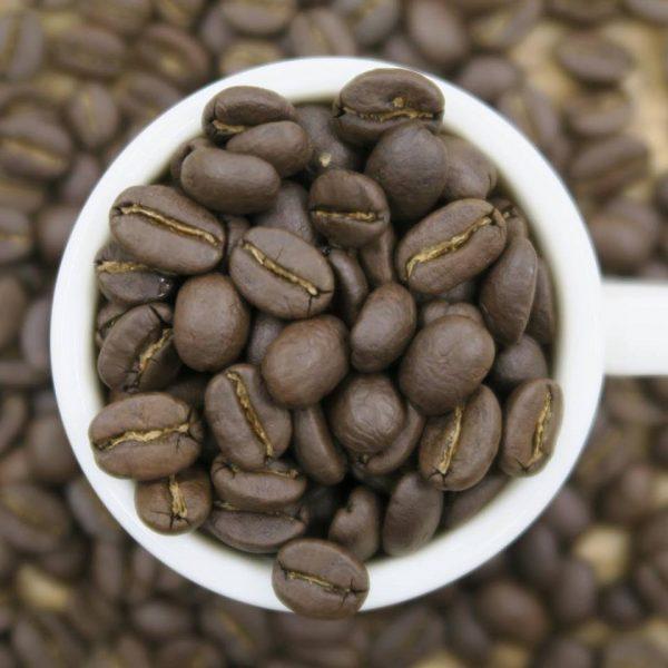 ザンビアのNCLL農園産のスペシャルティコーヒー