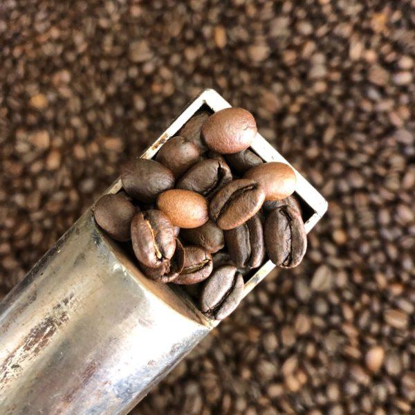 ナチュラル・モカ~サハマ農園~ コーヒー豆