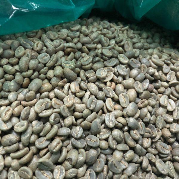 ペルー ~マチュピチュ天空~ 生豆