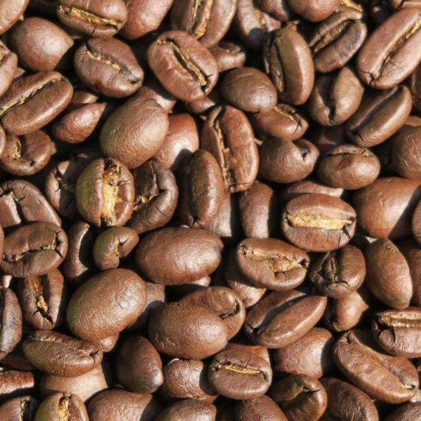 ボリビア~コパカバーナ農園~ 焙煎後の珈琲豆