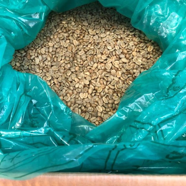 ウガンダ・カセセCWSナチュラル 生豆