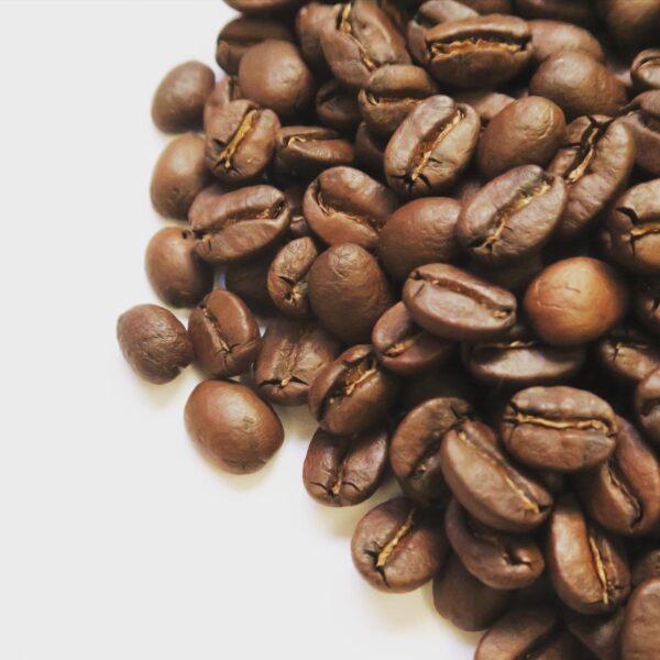 パナマコーヒー アンセルミート農園 焙煎豆