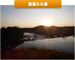 ザンビア NCCL農園 豊富な水源